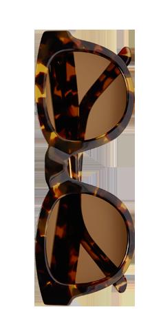Sun Buddies Type 04 - Brown Tortoise