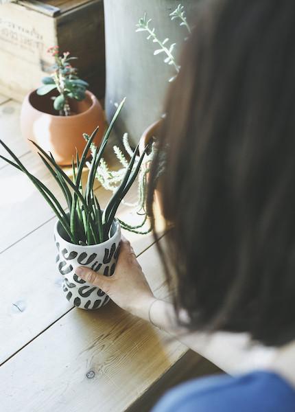 Maggie Boyd Ceramics - Vase
