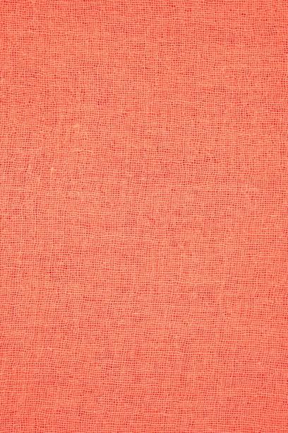 Chan Luu - Living Coral Cashmere & Silk Scarf