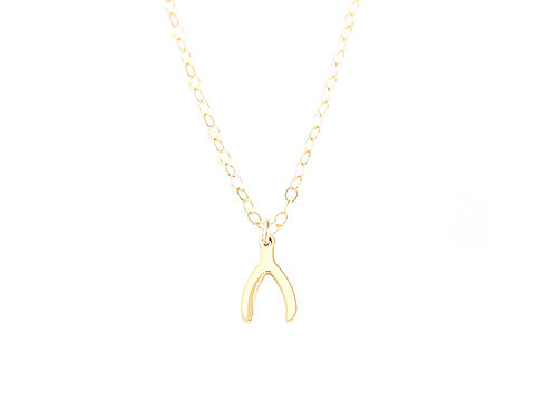 Seoul Little Wishbone Necklace