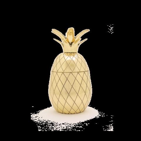 Mason Shaker Pineapple Tumbler - 1 Pint