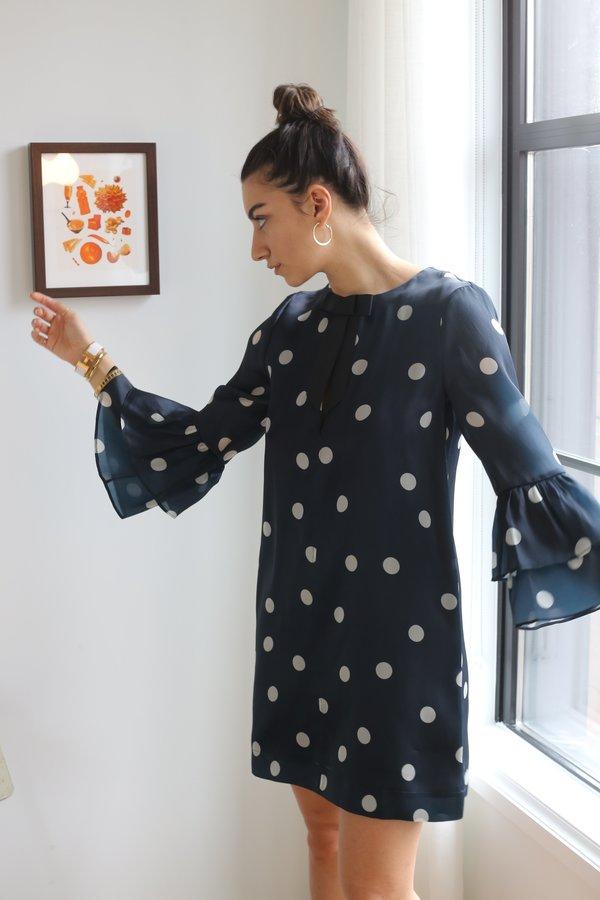 Ganni Seneca Silk Mini Dress