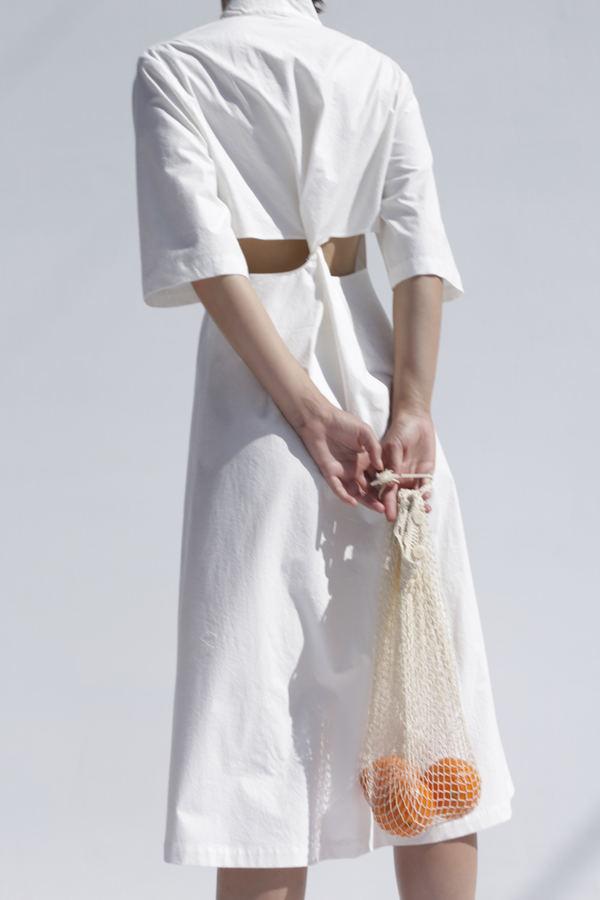 Shaina Mote Poet Dress