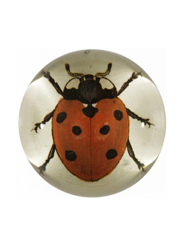 John Derian Ladybug Paperweight