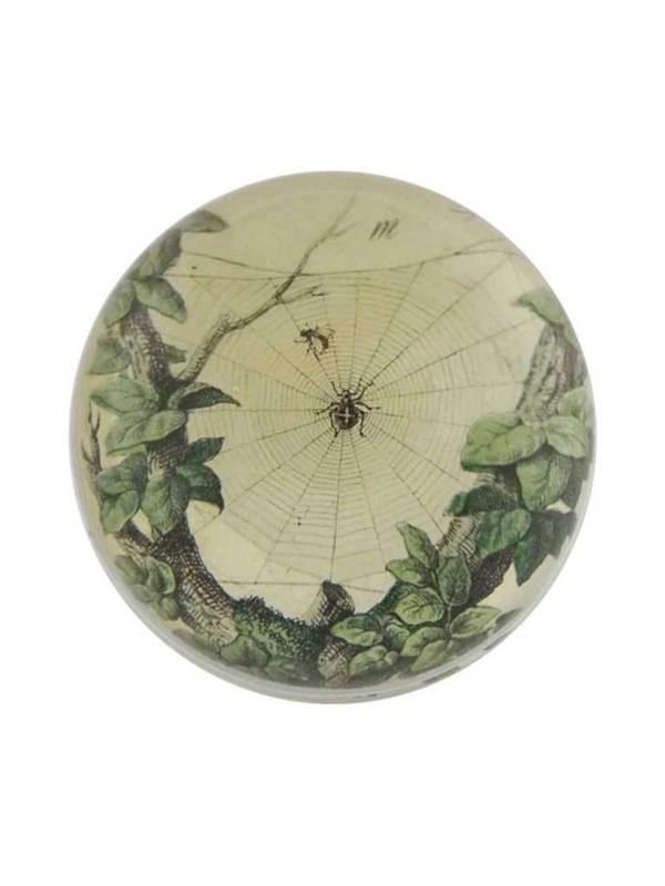 John Derian Leafy Web Paperweight