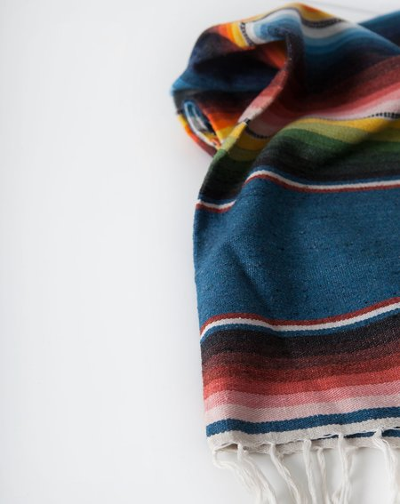 Vintage Southwestern Striped Blanket - Blue Stripe