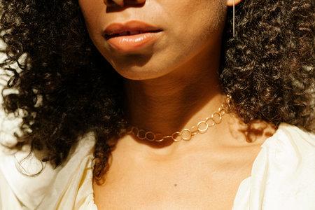Eyde the amalia chain choker - 14k Gold