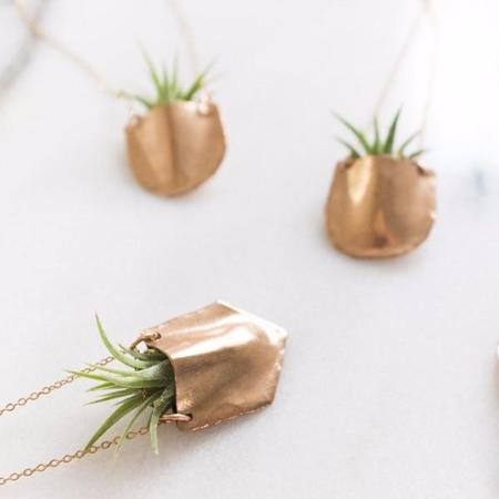 Dawning Collective Dawning Airplant Pocket Necklace - BRASS