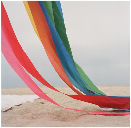 Elizabeth Cecil Rainbow Kite Print