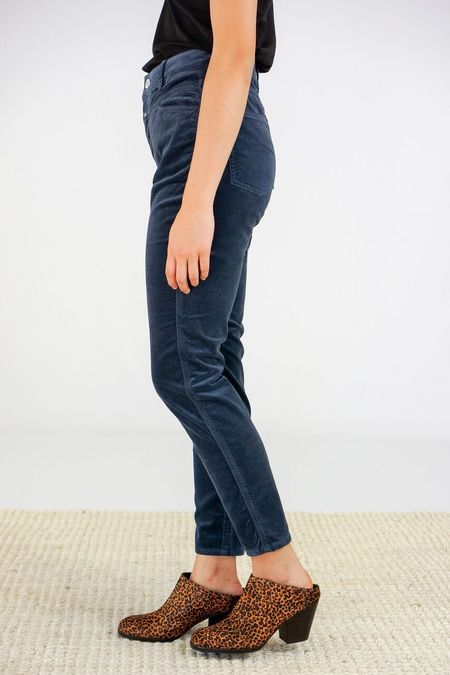 Closed Clothing Closed Skinny Pusher Velour Pants - Dusty Blue