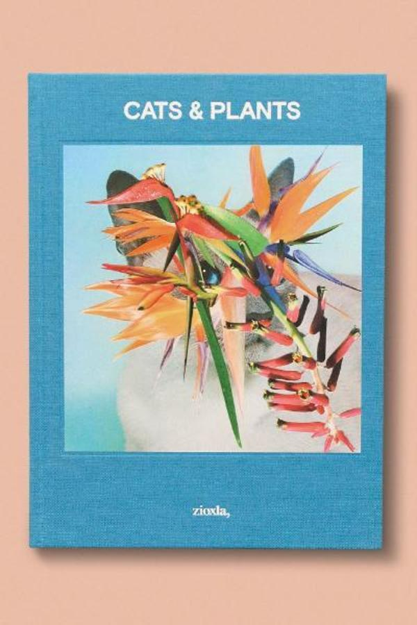 Coffee Table Books Cats And Plants Garmentory
