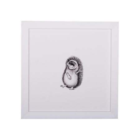 KIDS Petit Kolibri Luis Illustration