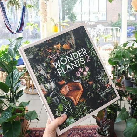 Judith Baehner Wonder Plants 2 Book