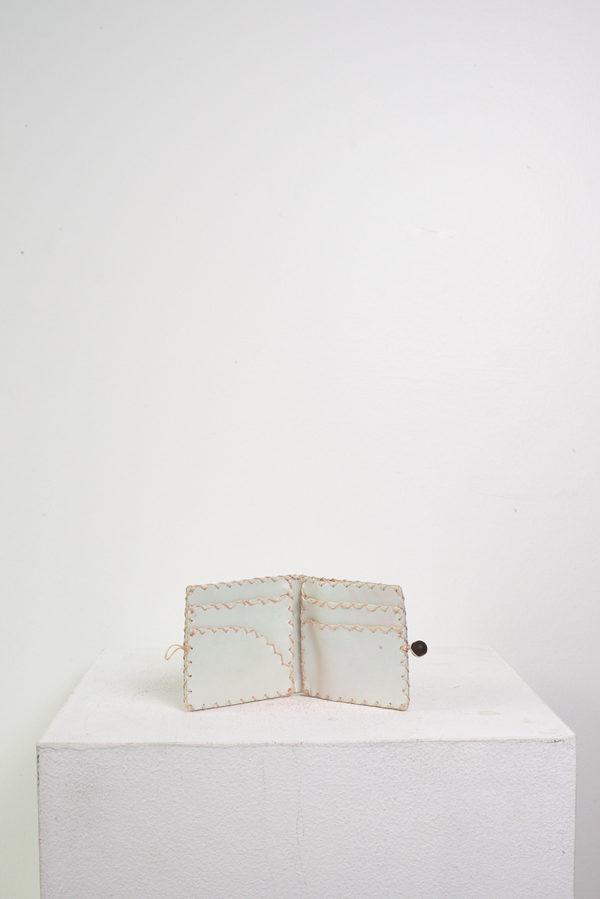 Maryam Nassir Zadeh Pheonix Wallet