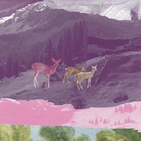 Domestic MONT ROSE SCENIC WALLPAPER