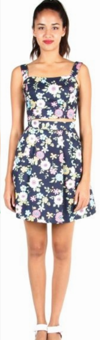 Birds of North America Aracari Skirt (Navy Floral)