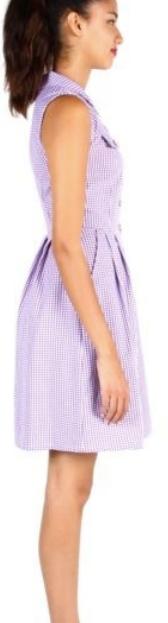 Birds of North America Lovebird Dress (Violet)