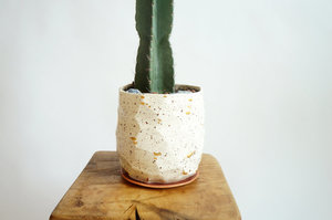 The Object Enthusiast Speckled Facet Vessel No. 6 - White/Gold