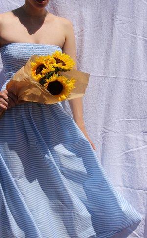 Pari Desai Pondicherry Skirt/Dress