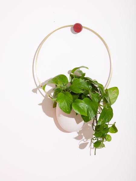 Light + Ladder Spora Circle Brass Planter