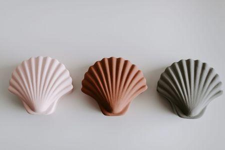 Los Objectos Decorativos Seashell Box