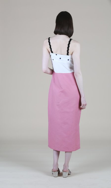 Ajaie Alaie Todas Dress - Polka Dot/Pink