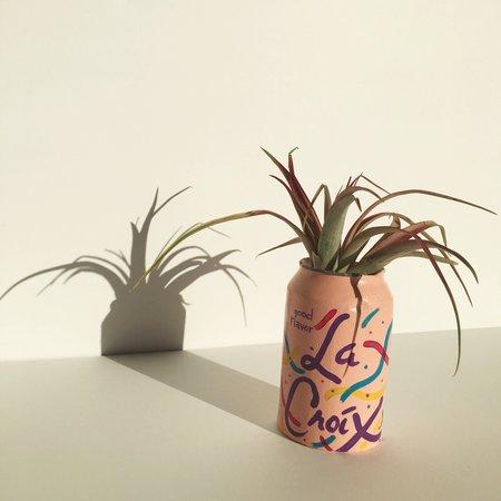 Hello Happy Plants La Croix Planter