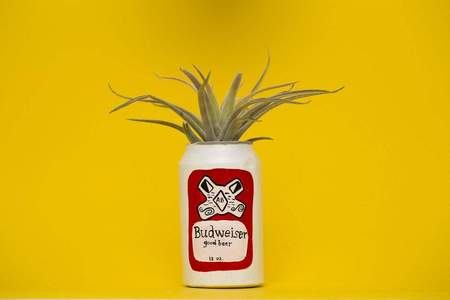 Hello Happy Plants Budweiser Planter