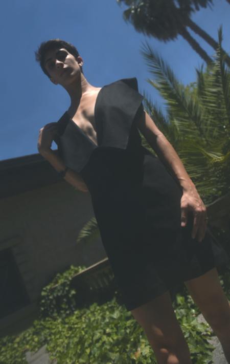 Gabriela Alexandrova Wool V Dress - black
