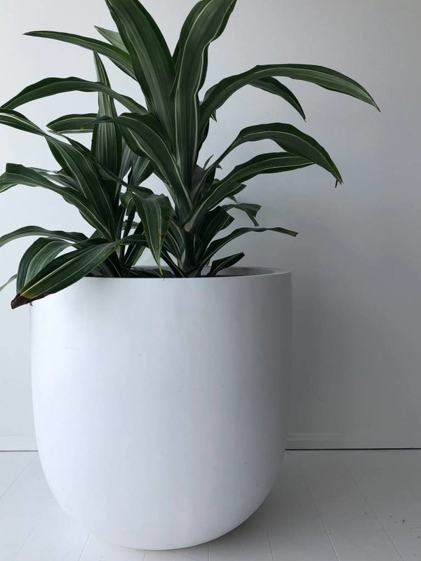 Common House Studio essential large pot - white