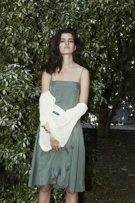 P&V Dropped Waist Dress - Fern
