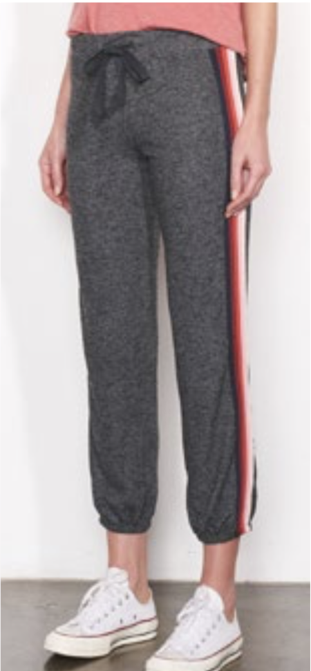 Sundry Sweatpant with Side Trim - CHARCOAL