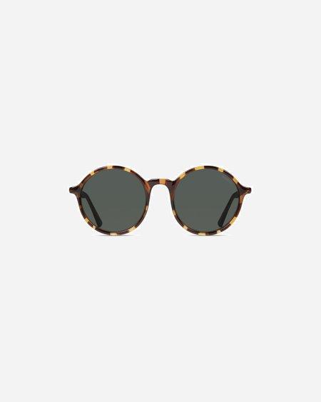 Unisex KOMONO Madison Sunglasses - Tortoise