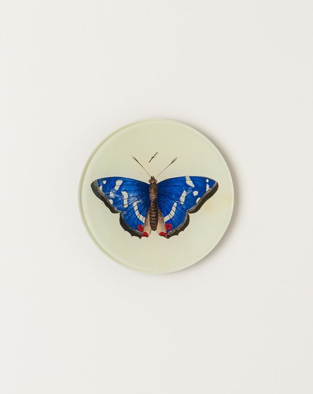 """John Derian 4"""" Round Deep Blue Butterfly"""
