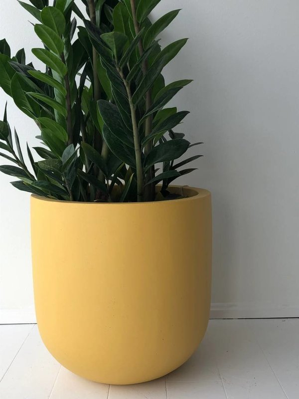 Common House Studio essential medium pot