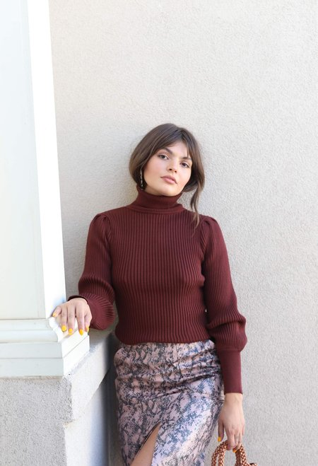 Moon River Fitted Turtleneck Sweater - Brown