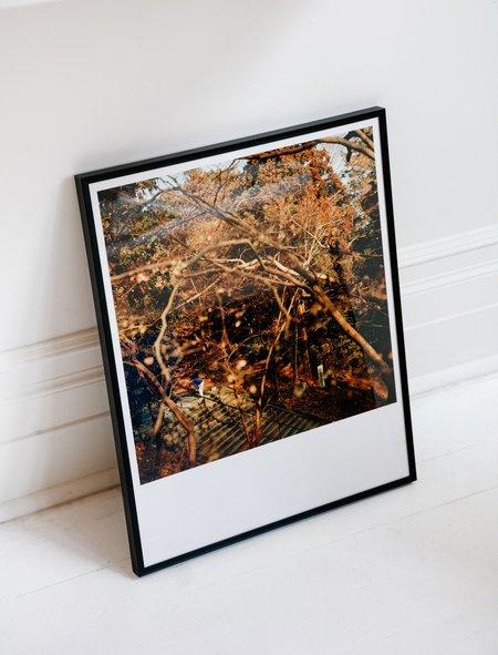 Ken Tisuthiwongse Framed Print