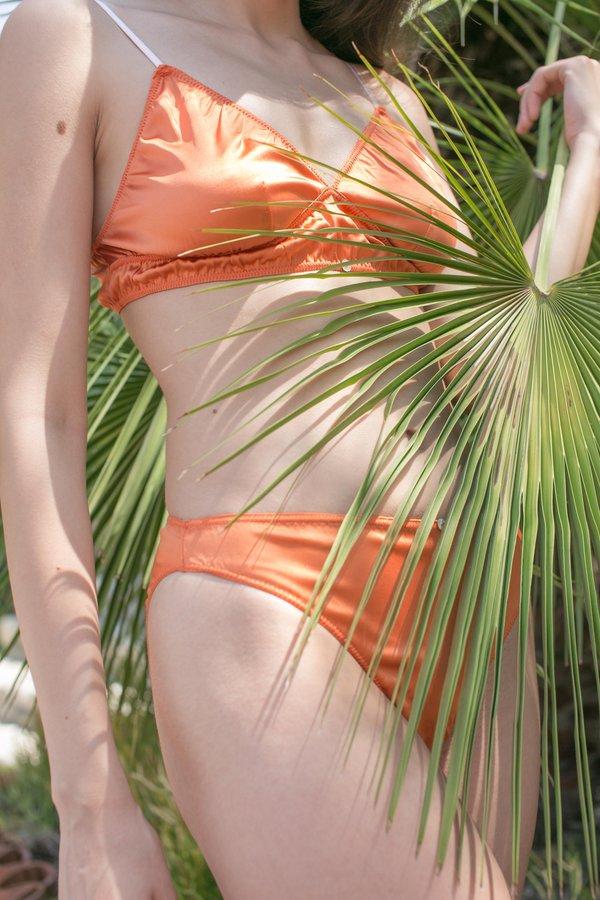 Botanica Workshop Rio Stretch Silk Brief - Sunset