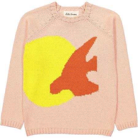 KIDS HELLO SIMONE Marmotte Sweater - Birds Rose