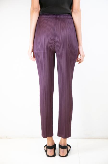 Issey Miyake Straight Pant - Dark Plum