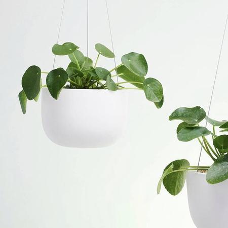 Angus & Celeste Raw Earth Hanging Planter - White