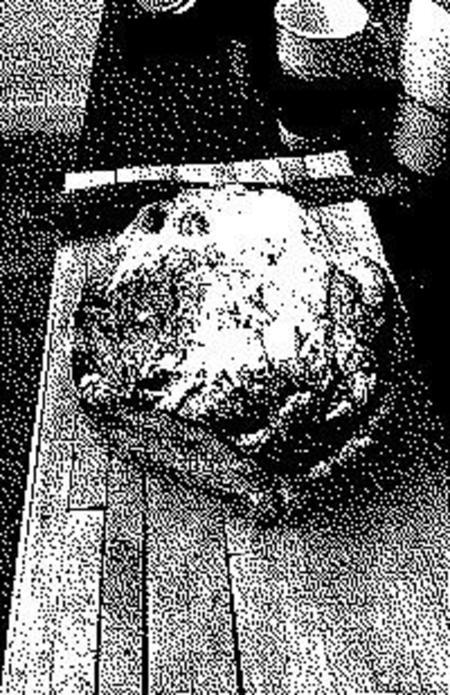 HALF-WET Loaf Rug