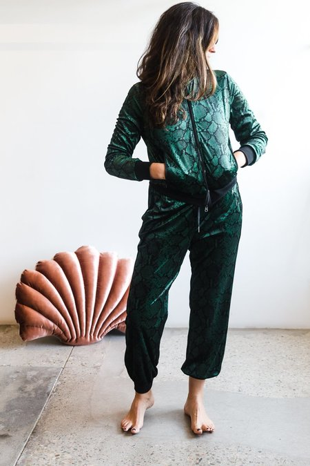 Pam & Gela Snake Jogger with Side Stripe - Evergreen