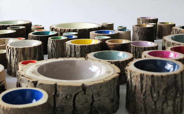Loyal Loot Log Bowl Size 5 - Cobalt