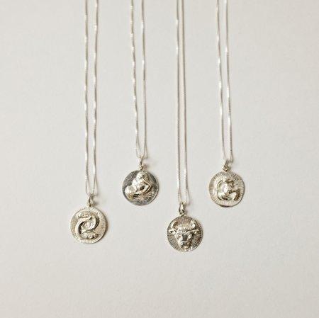Eleventh House Zodiac Talisman - Silver