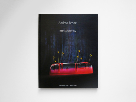 """Fortino Editions """"TRANSPARENCY"""" by ANDREA BRANZI Book"""