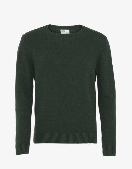 Colorful Standard Classic Merino Wool Crew - Hunter Green