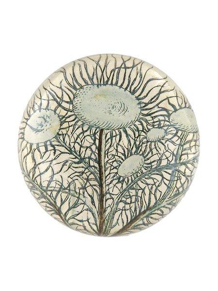 John Derian Moss Tree Moss Paperweight