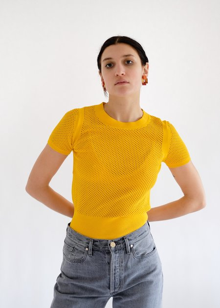 Autumn Cashmere Mesh Short Sleeve Crew - Marigold