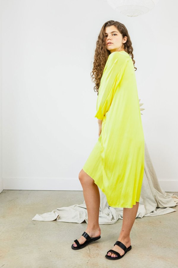 Miranda Bennett Muse Citron Silk Charmeuse Dress